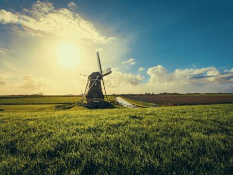 busy do Holandii Vanwiatrak Olsztyn warminsko-mazurskie pl